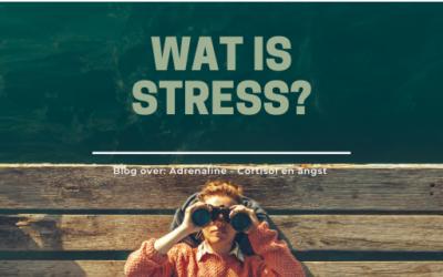 Wat is stress